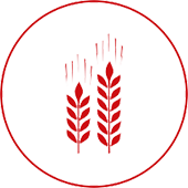 agriculture-icon.png